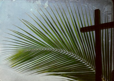 25 March 2018 Palm Sunday Services